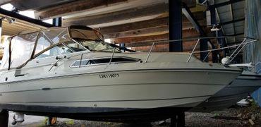1982 Sea Ray 245 Sundancer