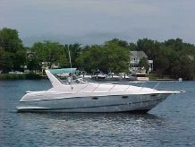1994 Chris-Craft Crowne
