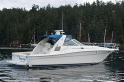 1998 Sea Ray Express Cruiser
