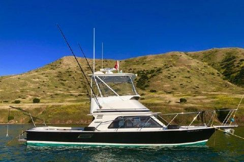 1984 Blackfin Flybridge