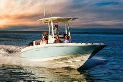 2021 Boston Whaler 270 Dauntless