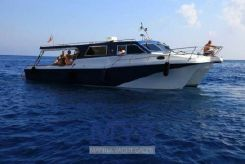 2008 Custom Cougar Catamarans 40 Ferry Hardtop