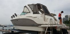 2009 Chaparral 310 Signature