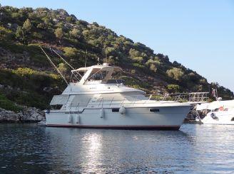 1987 Carver 4227 Motor Yacht