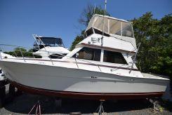 1985 Viking Convertible