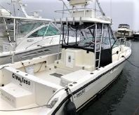 1991 Luhrs Tournament 300