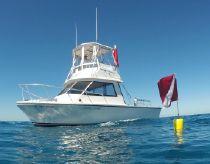 1999 Island Hopper Dive Master