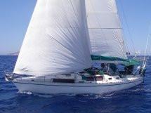 1992 Custom Gib Sea 422