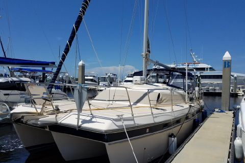 1996 Island Packet Cat 35 - Island Packet Cat