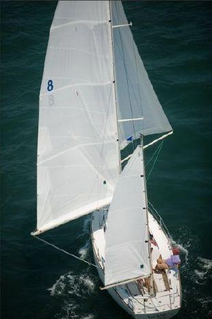 1999 Alerion Buy Maine