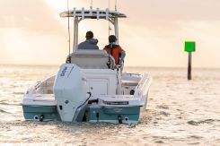 2021 Boston Whaler 250 Dauntless