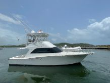 2006 Cabo 43