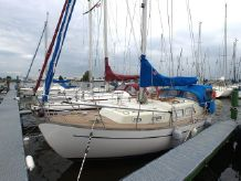 1986 Custom Lynaes 29