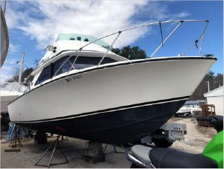 1973 Bertram 28 Flybridge
