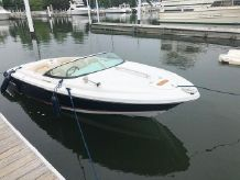 2008 Chris-Craft 20 Lancer