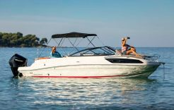 2021 Bayliner VR6 Cuddy