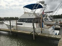1988 Bayliner 3818 Motor Yacht