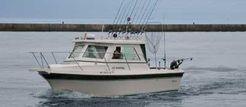 2006 Cherokee 270 Sportfish