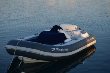 2018 Custom Williams Tender 285