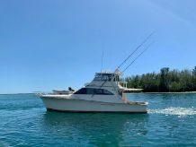 1995 Ocean Yachts 58