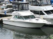 1992 Sea Ray 310 Amberjack SB