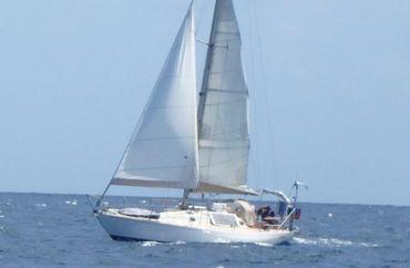 1974 Carter Offshore Antibes Carter 37