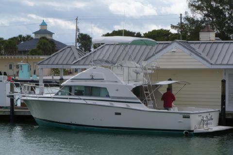 1984 Bertram 33 Sport Fisherman - Beam View