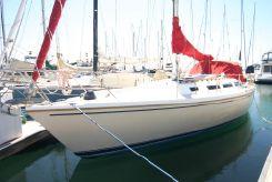 1983 Catalina 36 Sloop