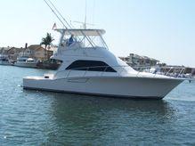 2005 Cabo Convertable