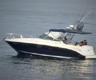 2006 Sea Ray Amberjack 290