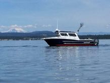 2015 Kingfisher 3325 Offshore