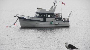 2002 Custom Trawler