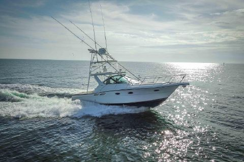 2004 Tiara 3200 Open - Profile 1