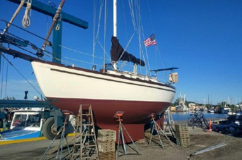 1979 Shannon 28 Sloop New Engine, Classic Beauty - 1979 Shannon 28 Edwards Yacht Sales