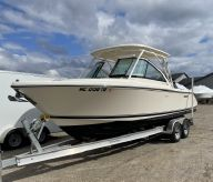 2011 Pursuit DC 265