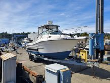 2006 Seaswirl Striper 2601