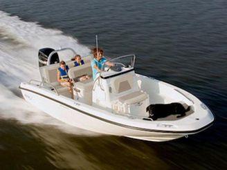 2020 Boston Whaler 180 Dauntless