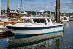 1995 Sea Sport Explorer