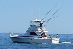 1984 Bertram 35 Sportfish