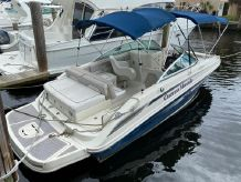 2010 Sea Ray SunDeck 220