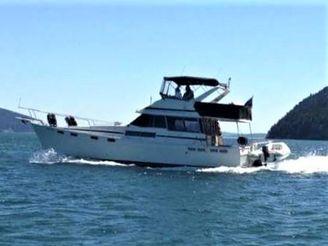 1986 Bayliner 38 Motoryacht