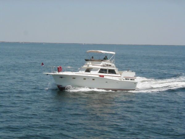 1979 Viking Motor Yacht EXTRA CLEAN!!! - Photo 1