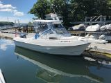 photo of 23' Aquasport 230