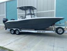 2021 Sea Cat 260 Hybrid Catamaran