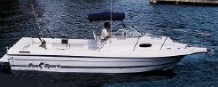 2000 Sea Sport 2544 Walk Around