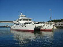 2009 Custom Catamaran