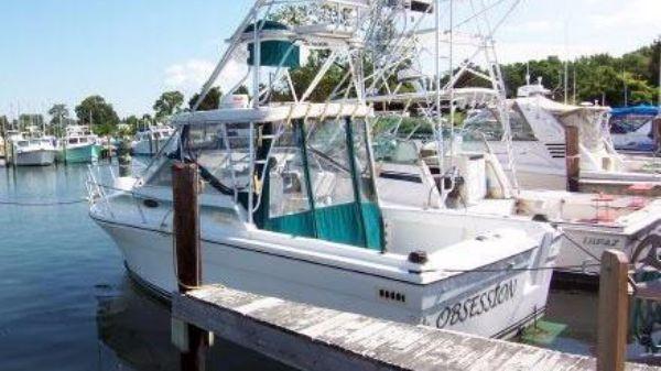 Baha Cruisers Weekend Tournament Fisherman