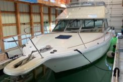 1992 Sea Ray Sport Bridge