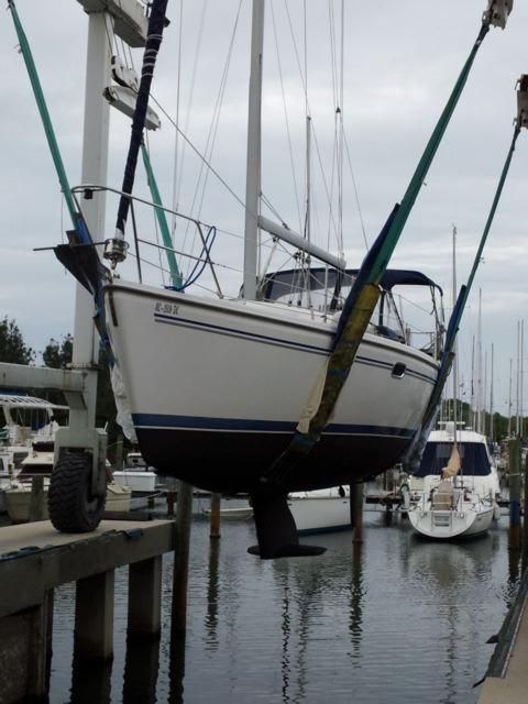 31 Catalina 310 Hauled for Bottom Job July 2013