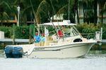 Grady-White Marlin 300image